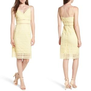 Lace Body-Con Midi Dress- S & XXL